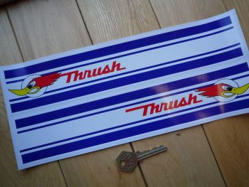 "Thrush Oblong Shaped Stickers. 12"" Pair."