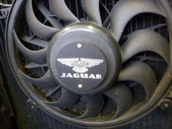 Jaguar 50's & 60's Style Laser Cut Self Adhesive Circular Car Badge. 80mm.