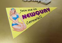 "Newquay Travel Pennant Sticker. 4""."