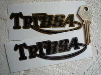 "Tribsa Shaped Text Stickers. 4.5"" Pair."
