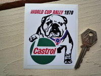 World Cup Rally