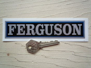 "Ferguson Silver Oblong Stickers. 6"" Pair."