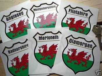 "Wales County Shield Sticker. 3""."
