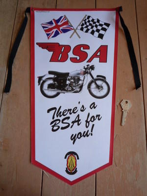 BSA There's a BSA For You! Banner Pennant.