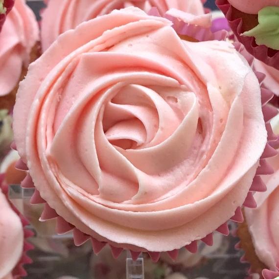 Rose Swirl Cupcake
