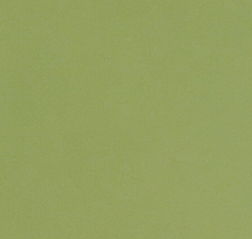 Faux Leather - Sheet - Pale Green