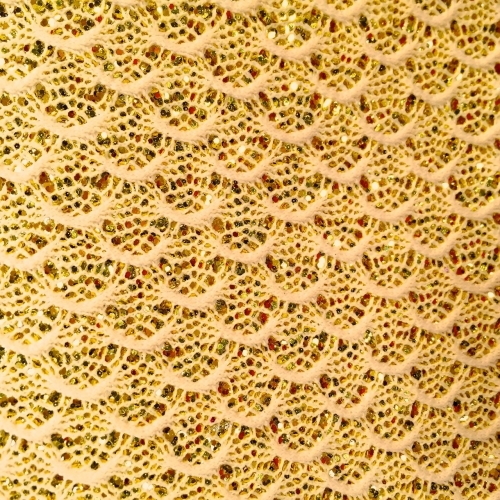 Lace Glitter Fabric - Gold