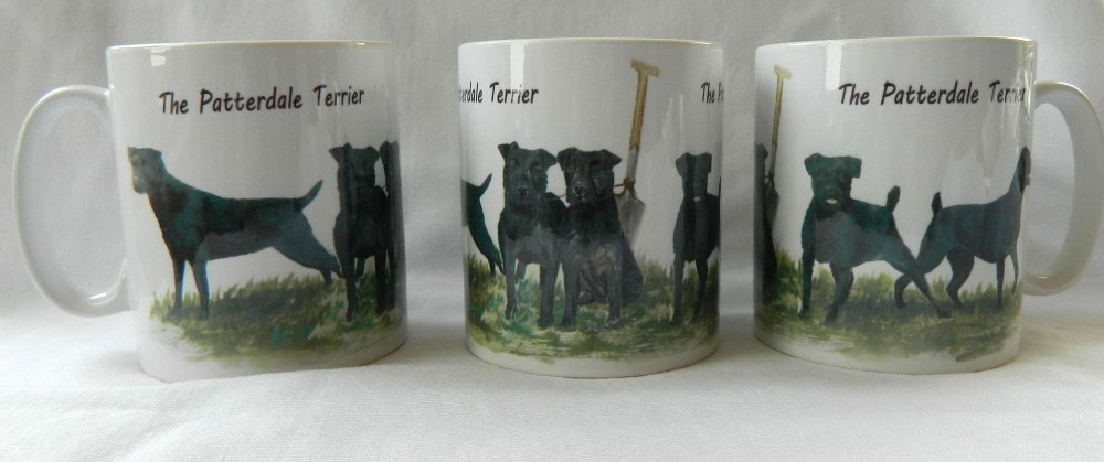 Patterdale Terrier, mug No3
