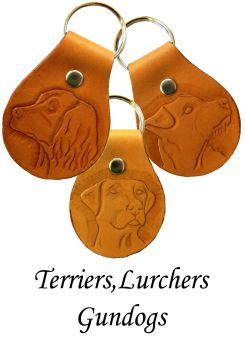 Terriers,lurchers,gundogs3