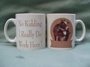 No kidding, humorous mug