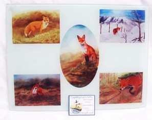 Fox, Glass worktop protector