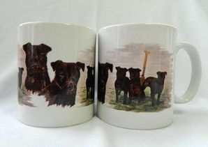 New design Patterdale mug