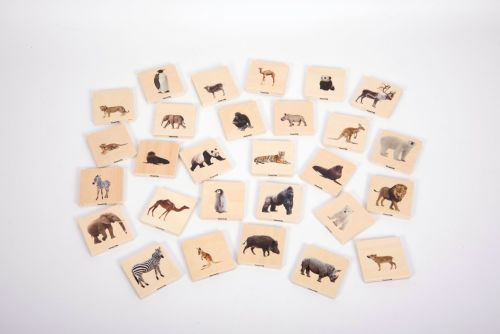 Wild Animal Family Match Game