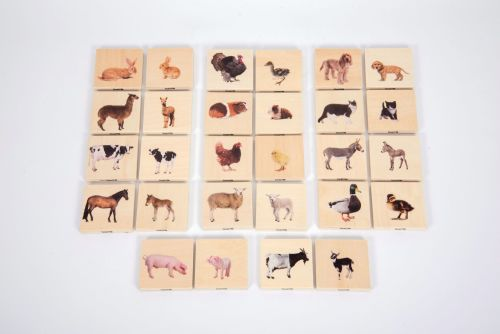Domestic Animal Family Match Game