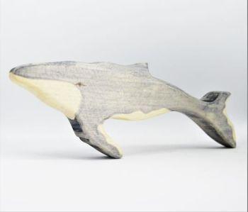 Humpback Whale Calf - Eric & Albert