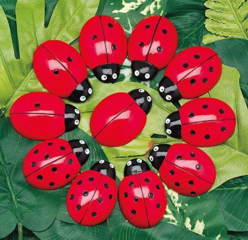 Ladybugs Counting Stones