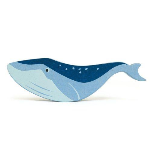 Coastal Animals - Whale