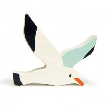 Coastal Animals - Seagull