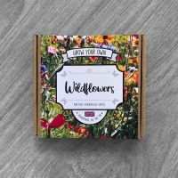 Grow your own Wildflowers