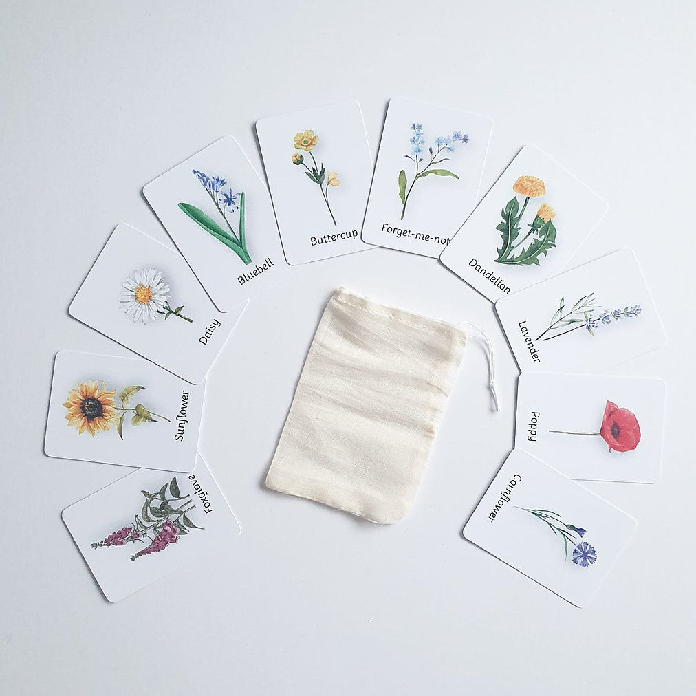 Flashcards - Wildflowers