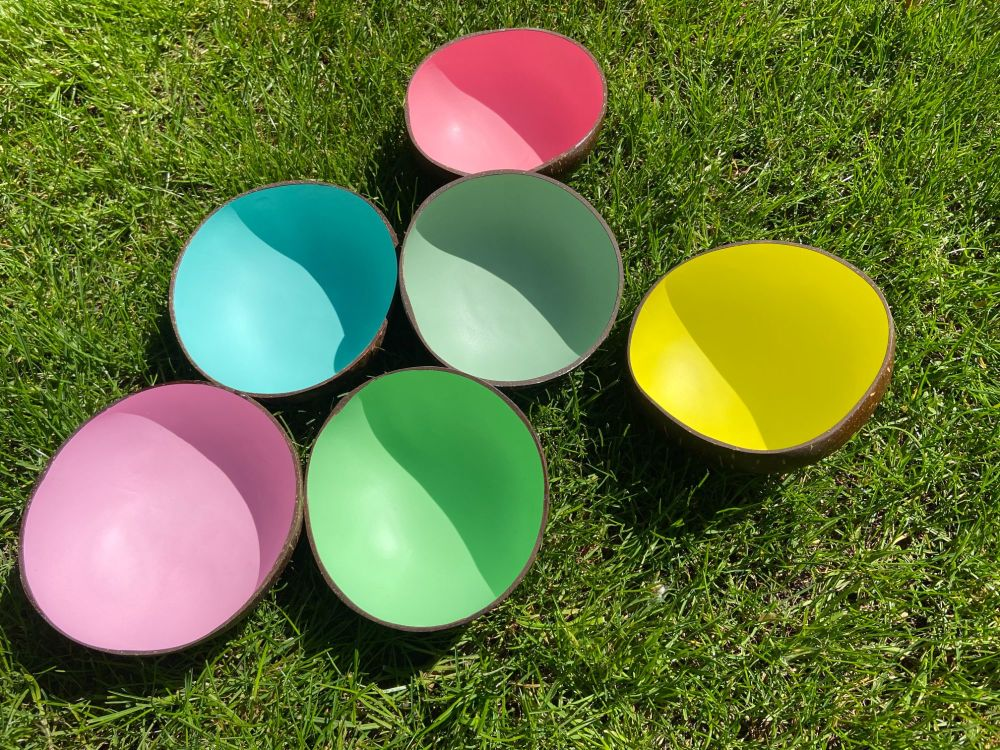 Coconut Bowls - Pastel Colours
