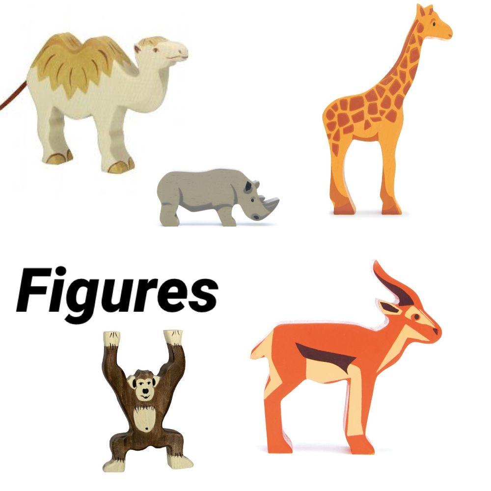 Zoo & Safari Animals