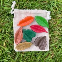 Mixed Leaf Crayons