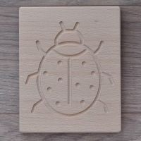 Ladybird Sensory Board