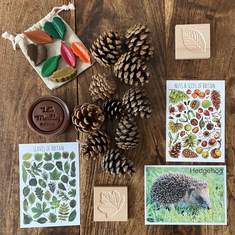 Autumnal Box - Craft & Explore