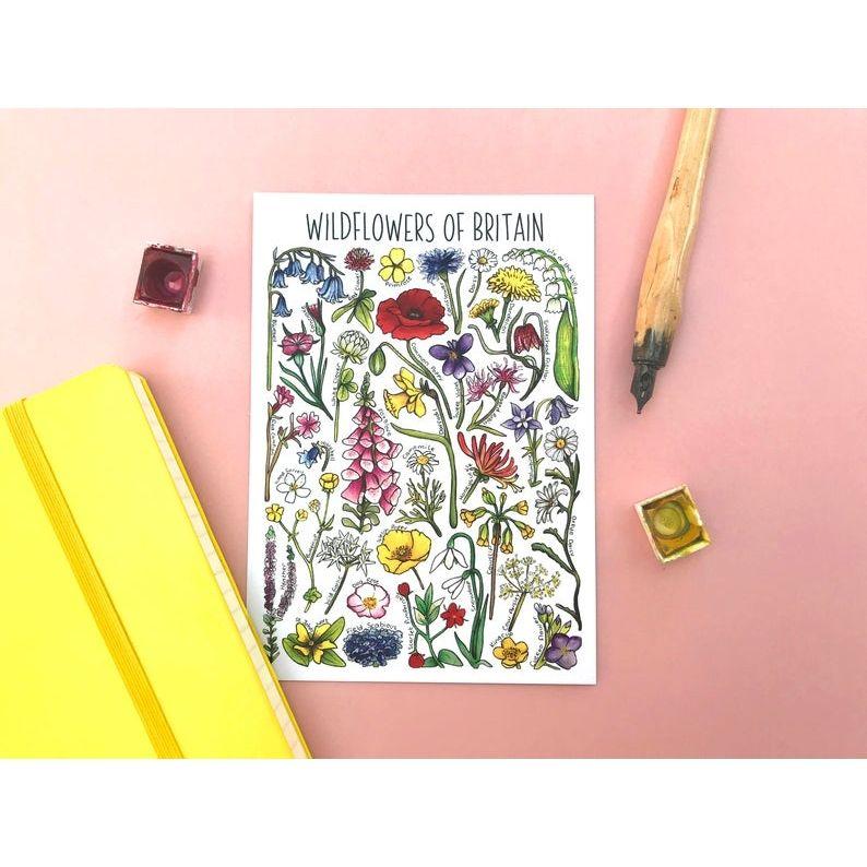 Wildflowers of Britain