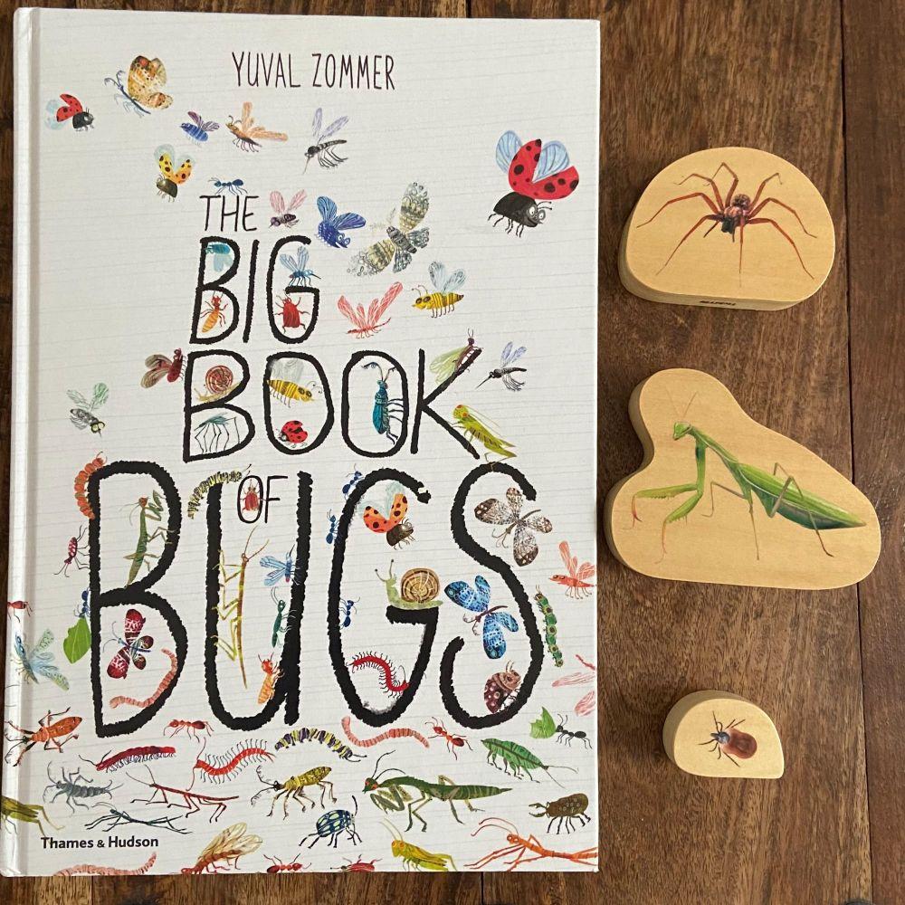 Big Book of Bugs, Book & Bundle