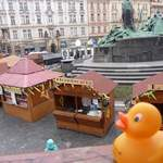 Duck In Prague At Easter 4