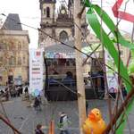 Duck In Prague At Easter 5