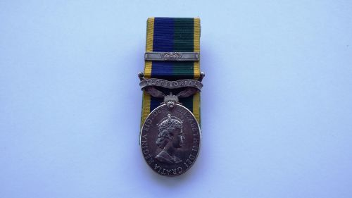 EII Territorial Efficiency Medal with bar to 24606501 LCPL K J Sharman PWRR