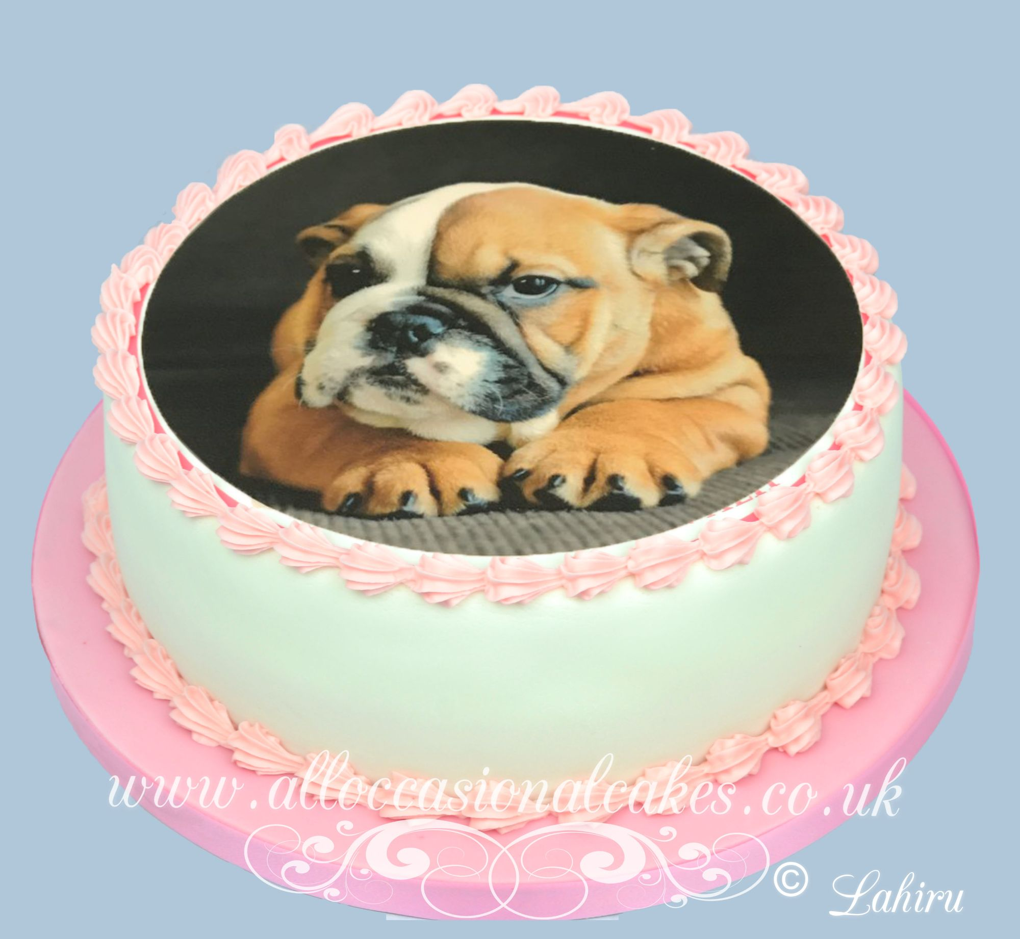 dog  edible picture birthday cake