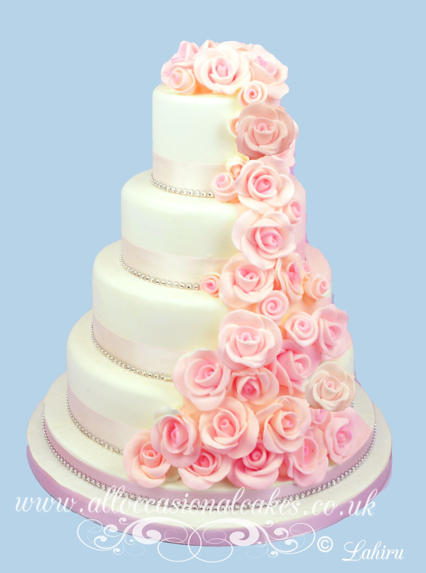 Pink rose cascade
