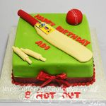 cricket bat and ball cake