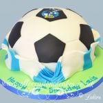 bristol rover football cake