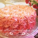 shaded pink buttercream cakes