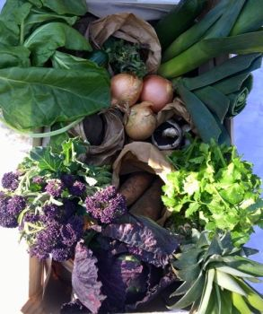 web Wk 16 Veg box April 20th 2018