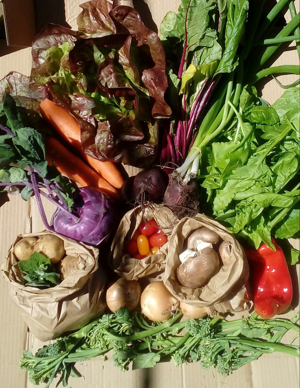 Veg box Large cropped portrait for box page June 2020