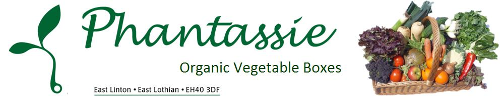 Phantassie Veg Boxes, site logo.
