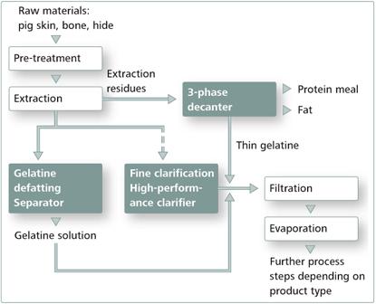 gelatine-process