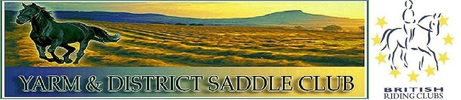 Yarm & District Saddle Club, site logo.