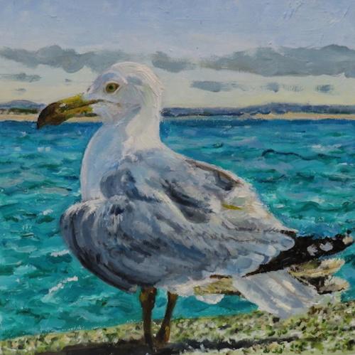Seagull print