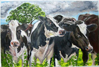 Giclee Print 'Cows In Dorset' Unframed