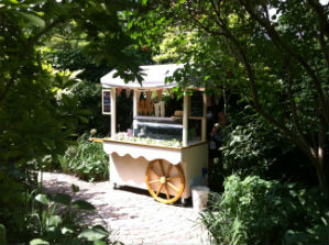 ice cream cart for hire