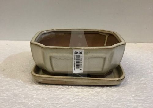 bonsai pot and tray white