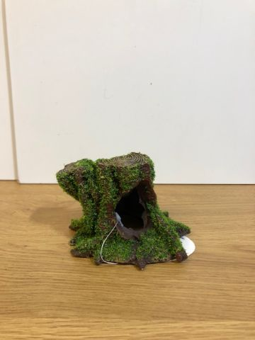 Small tree stump with moss