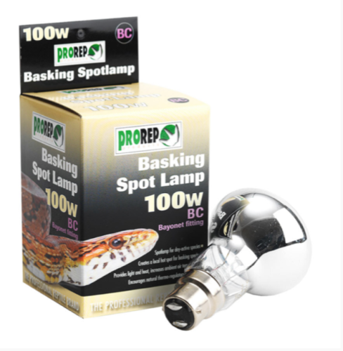 100W BC CLEAR Spot Lamp